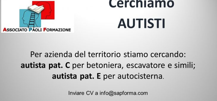 Sei un autista?